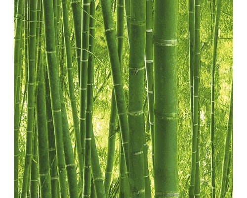 salade bowl bamboepapierpe 1300ml 185mm naturel